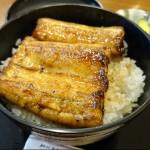 新潟の老舗うなぎ店でうな丼を食べました!