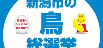 熱い選挙戦はすでに始まっていた!新潟市の鳥総選挙~新潟市のシンボルに輝く鳥は!?~