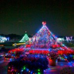 美しい光の園、青色LEDバンザイ! いくとぴあ食花の「ハッピーハロウィンイルミネーション」に行ってきました