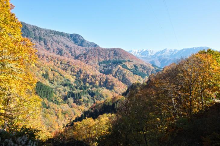 「萌木の里」から少し入った場所からの風景。手前の紅葉の山々と、白に染まった遠くの山がキレイです。