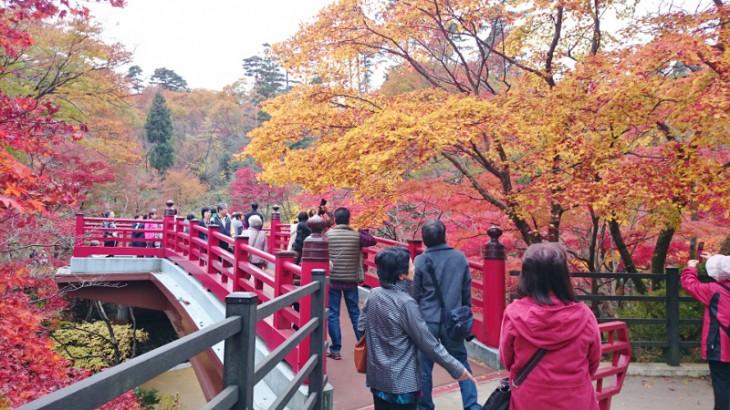 そしてこれがもみじ谷にかかる「観月橋」です。平日でもこれだけ多くの人がいます。みなさん、写真を撮ったりしながら、しばし紅葉に見とれていました。