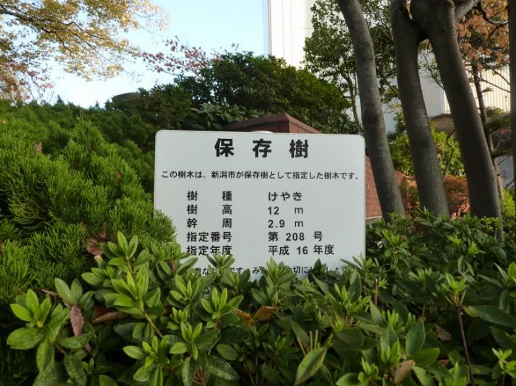 14botanical_hozonju20803