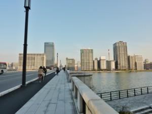 新潟市保存樹20602