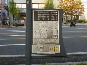 新潟市保存樹20601