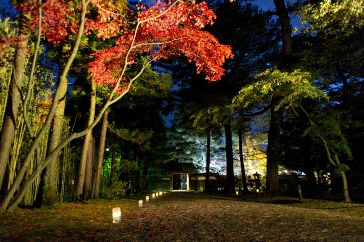 入口からすぐの中門に向かう道です。脇にはロウソクの明かりも置かれています。夜空に紅葉が映えます。