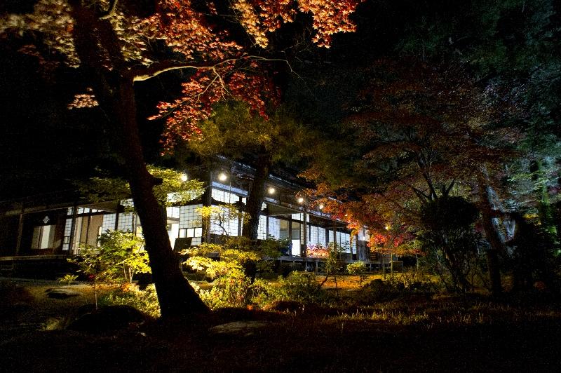 水面に映る紅葉に感じる日本の美、新発田「清水園」のライトアップに行ってみました