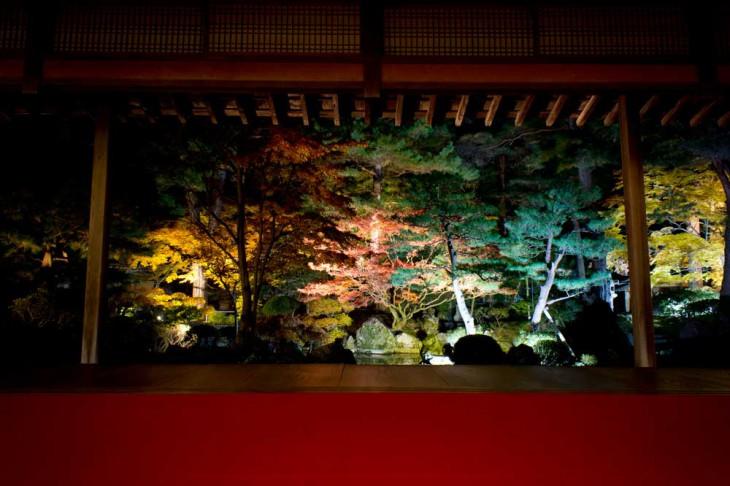 座敷の真ん中から庭園を眺めます。まるで一枚の絵のような光景。日本の美、新潟の四季、それを体感させてくれる、すばらしい光景でした。