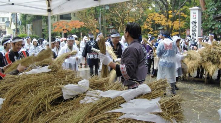 初穂は神聖なものなので、白い布に包んで丁寧に運ばれます。