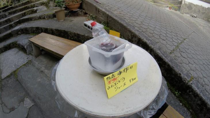 温泉街に戻ると、お土産屋さんの店先で手作りの「山ぶどうジュース」を発見しました。おいしくいただきました。
