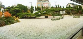 【小ネタ】盆栽を地植え→20メートル。山形県の天然記念物「念珠の松」見てきた