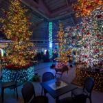 約22万球のLEDが織りなす光の園、新潟市中央区のいくとぴあ食花で「クリスマスイルミネーション2014」が開催(11/29~12/25)