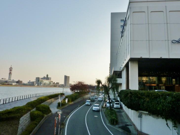 新潟市保存樹20603