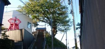 いま登山するべき新潟市の山はココ&ひと休みなら「日和山五合目」で