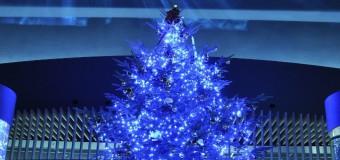 3つの期間限定プログラムが登場、新潟市中央区「マリンピア日本海の特別なクリスマス」が開催