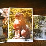 灯籠・こま犬の写真が約100点 北前船の時代館 旧小澤家住宅で企画展示