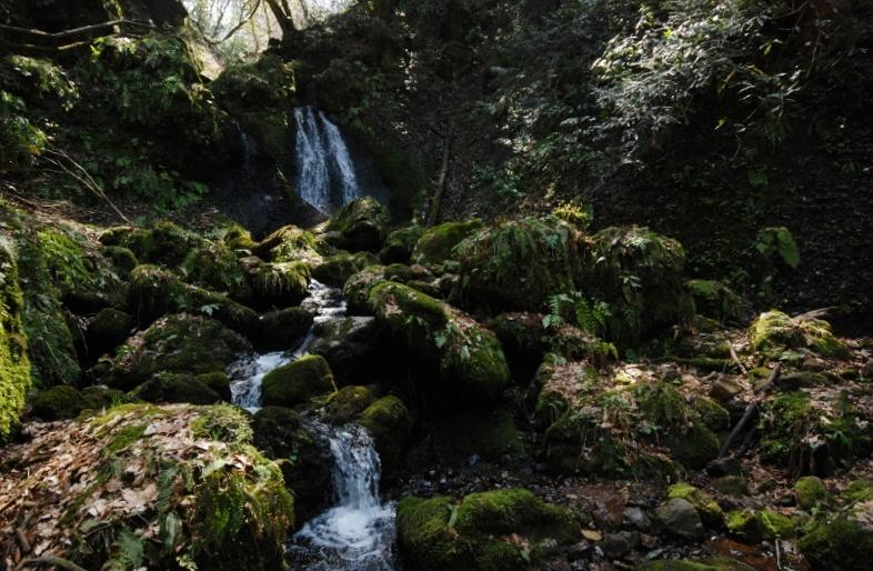 白玉の滝(秋葉区)に春が来ました