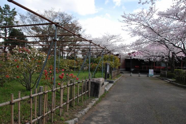 150408鳥屋野潟公園01
