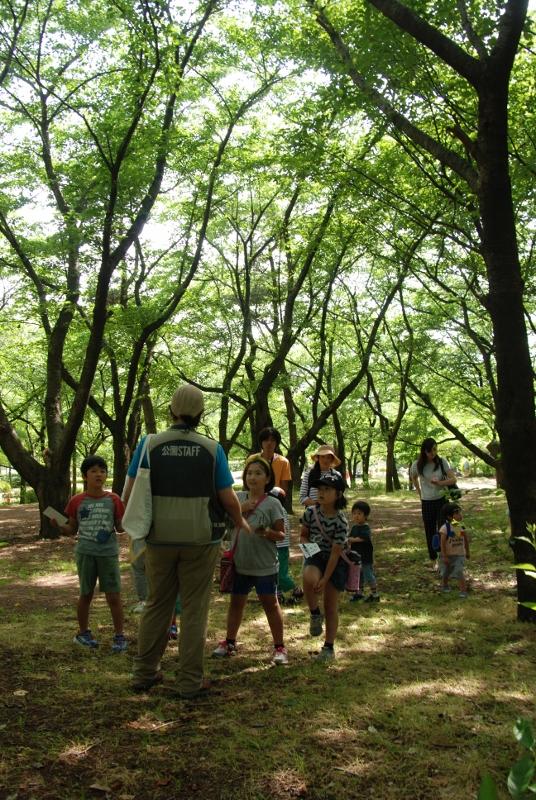 1505鳥屋野潟公園イベント_08