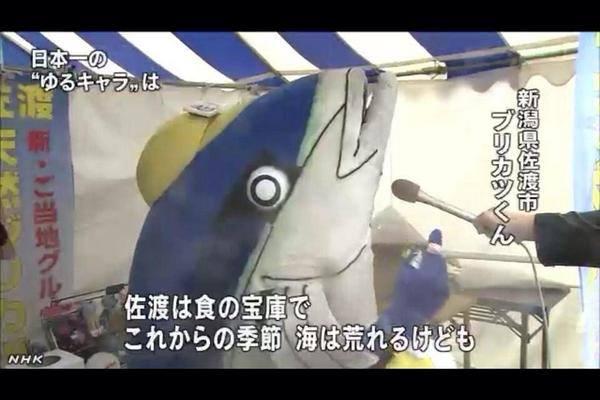 ブリカツくん25-05 (600x400)