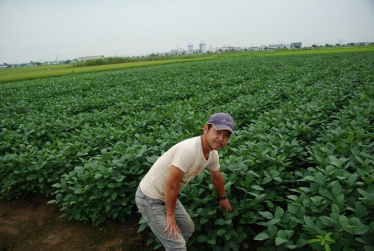 新潟茶豆長澤氏-08