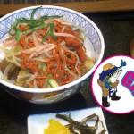 【心はいつも佐渡ンリー】vol41 ブリカツくんが彦根でハマった美味な丼