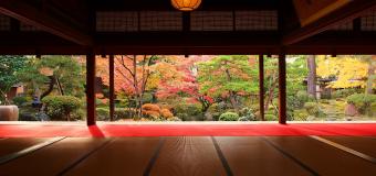 新潟県に5家いた大豪農「千町歩地主(せんちょうぶじぬし)」が残したもの