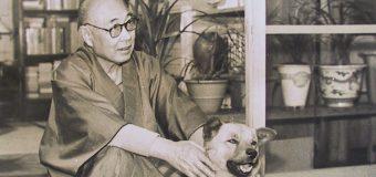 生涯で生み出した物語は1200編! 弱き者のために童話を書いた日本近代童話の父。